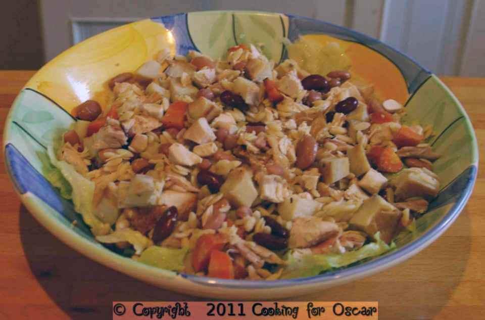 Chicken-and-Rissoni-Salad-1-1024x675